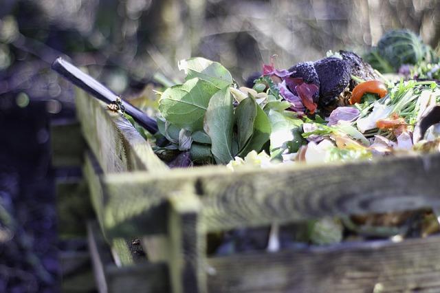 Kompostierung mit einem Thermokomposter